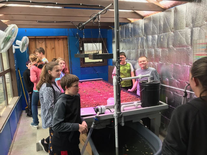 7th grade learning about our greenhouse and aquaponics system