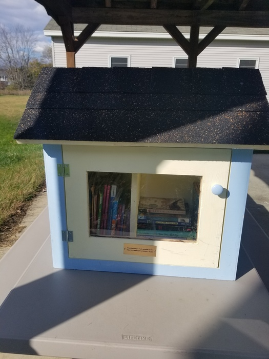 little library with books