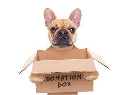 Girl Scouts- Animal Shelter donations needed