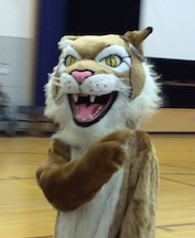 The Wildcat - our school mascot